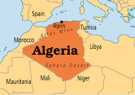 Compression springs in Algeria