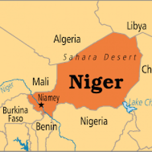 Compression Springs in Niger.