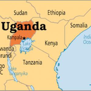 Uganda - Compression Springs.
