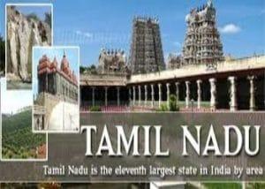 Compression Springs in Tamil Nadu